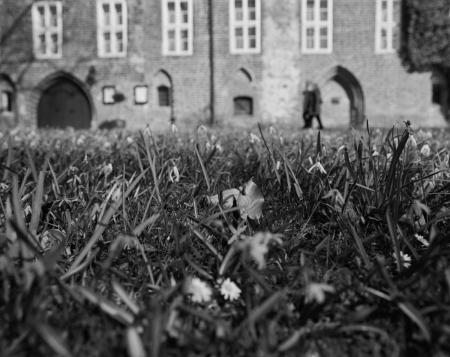 Vor dem Kloster Wienhausen